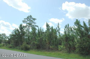 2625 Slow Flight Drive, Vacant Lot in Spruce Creek