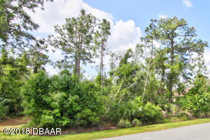 2633 Slow Flight Drive, Vacant Lot in Spruce Creek